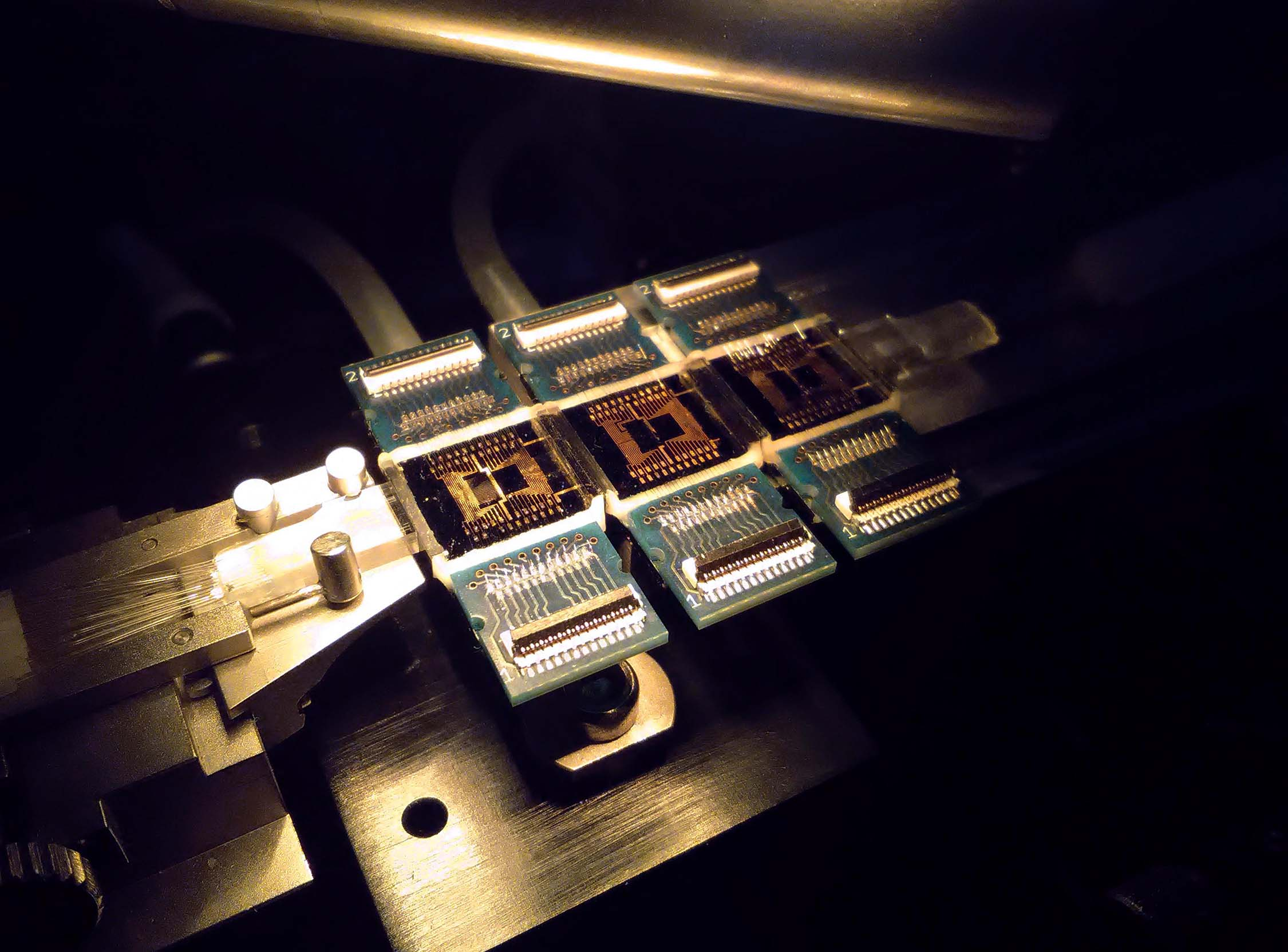 Quantum Photonic Chips